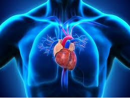 Dr. HANAFI Abdelaali Cardiologue